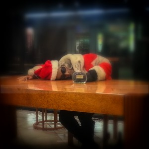 My friend Santa completely drunk after the party we had last night.